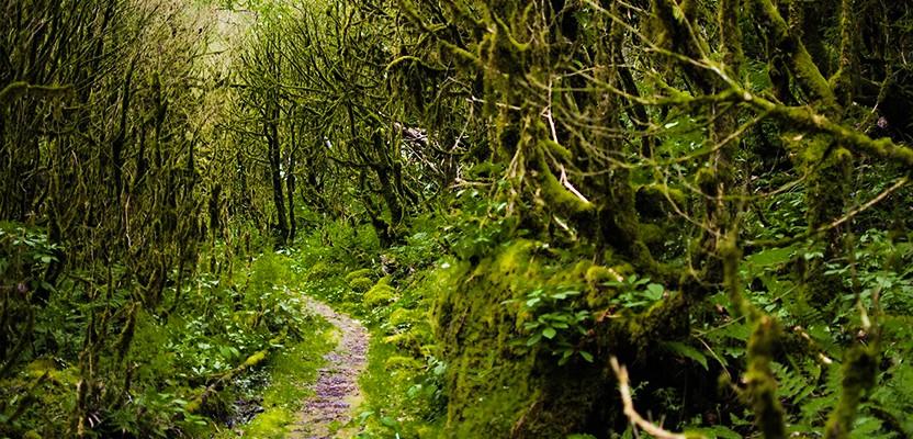 Мирвети — лучшее место для велотура, рафтинга и отдыха