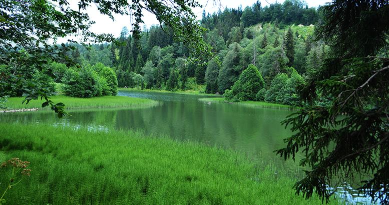 The loveliest lake in the mountainous Ajara