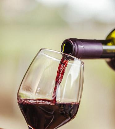 ღვინის ტურიზმი