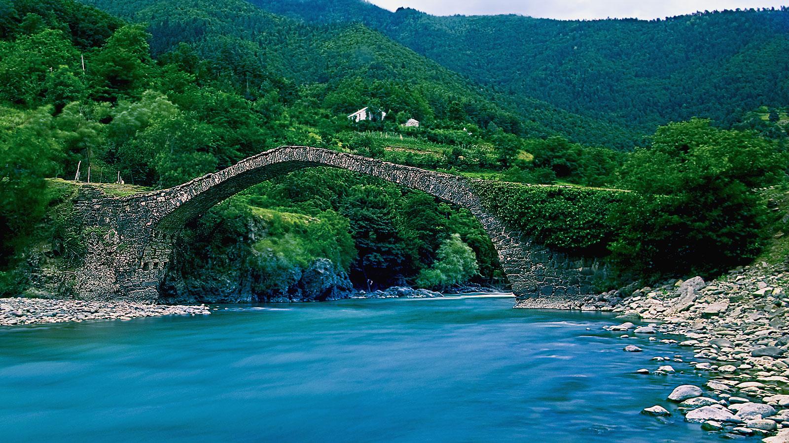 Arkveida tiltiņi
